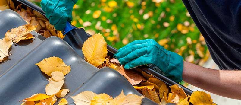 Keeping your gutters clean
